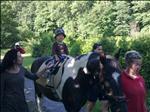na konících